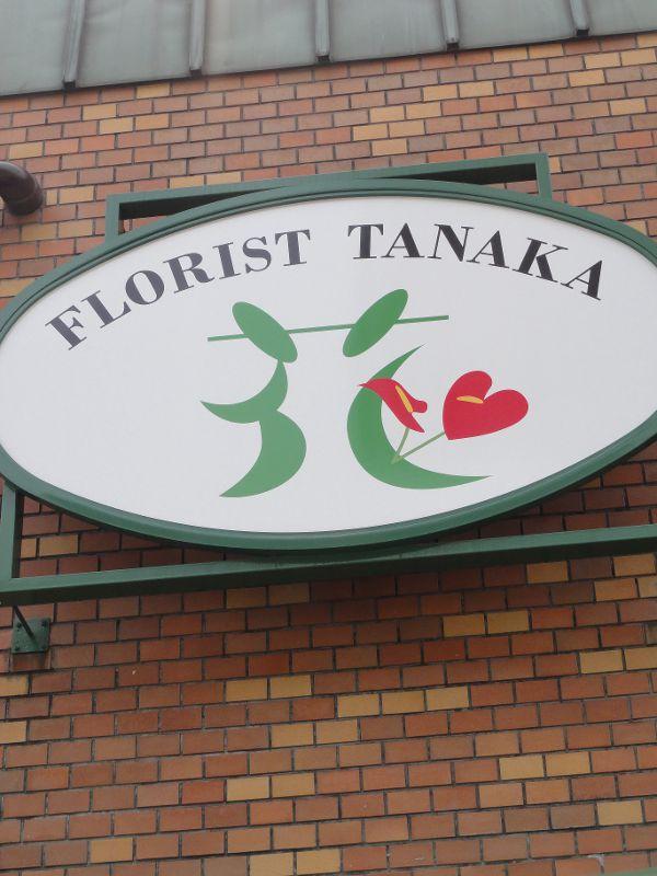 tanaka-001-001